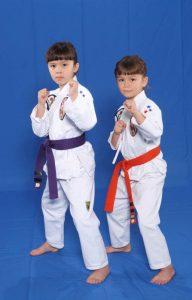 Türkiye Karate Federasyonu (TKF)