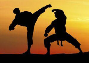 Türkiyede Karate